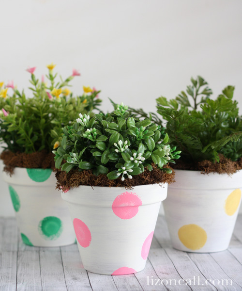 Spring Blossoms in polka dot pots.  Brighten up your home for spring!