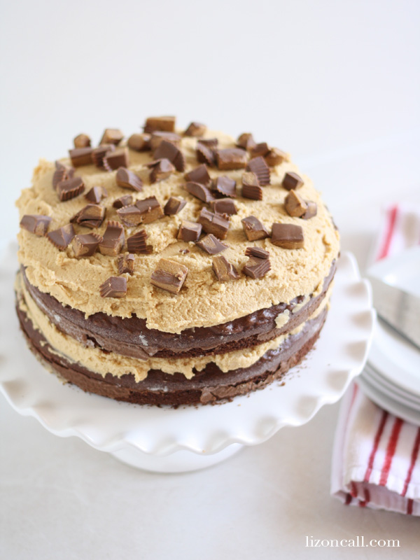 Double layer chocolate cake with peanut butter frosting - lizoncall.com