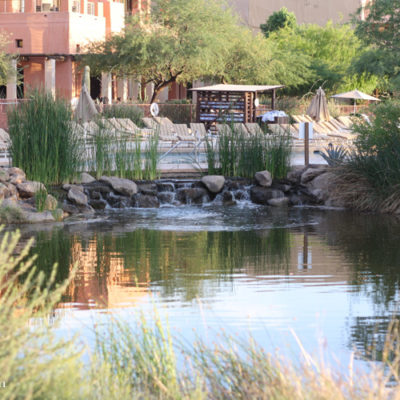 Sheraton Wild Horse Pass in Chandler AZ