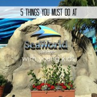 5 Things you Must Do at Sea World with Young Kids