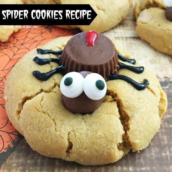 http://lizoncall.com/wp-content/uploads/2016/09/spider-cookies-square.jpg
