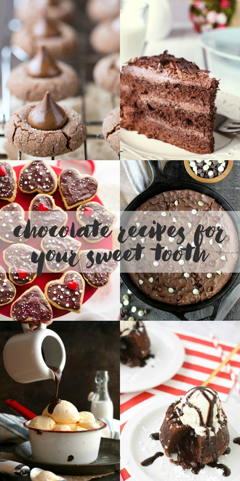 Craving something chocolatey? These chocolate recipes are sure to curb your craving. Chocolate recipes for your sweet tooth.