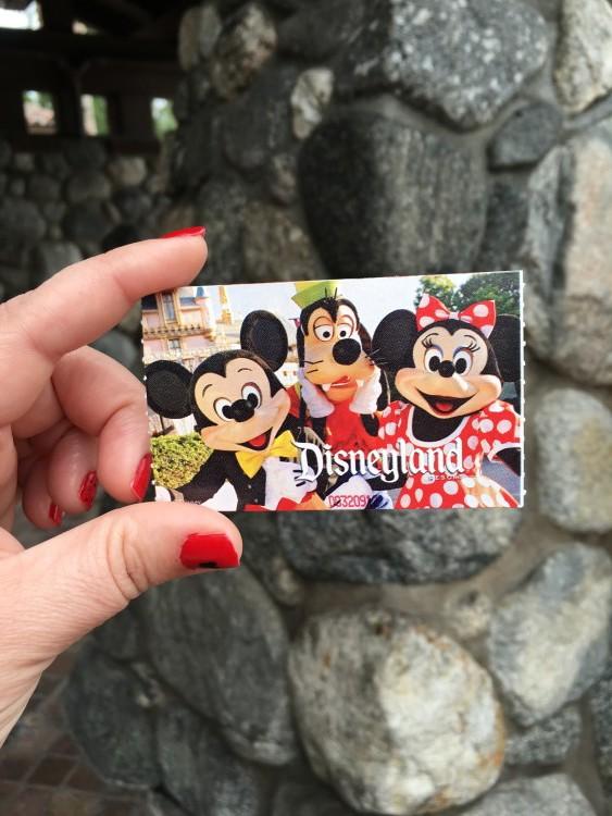 Family summer vacation planning - Disneyland