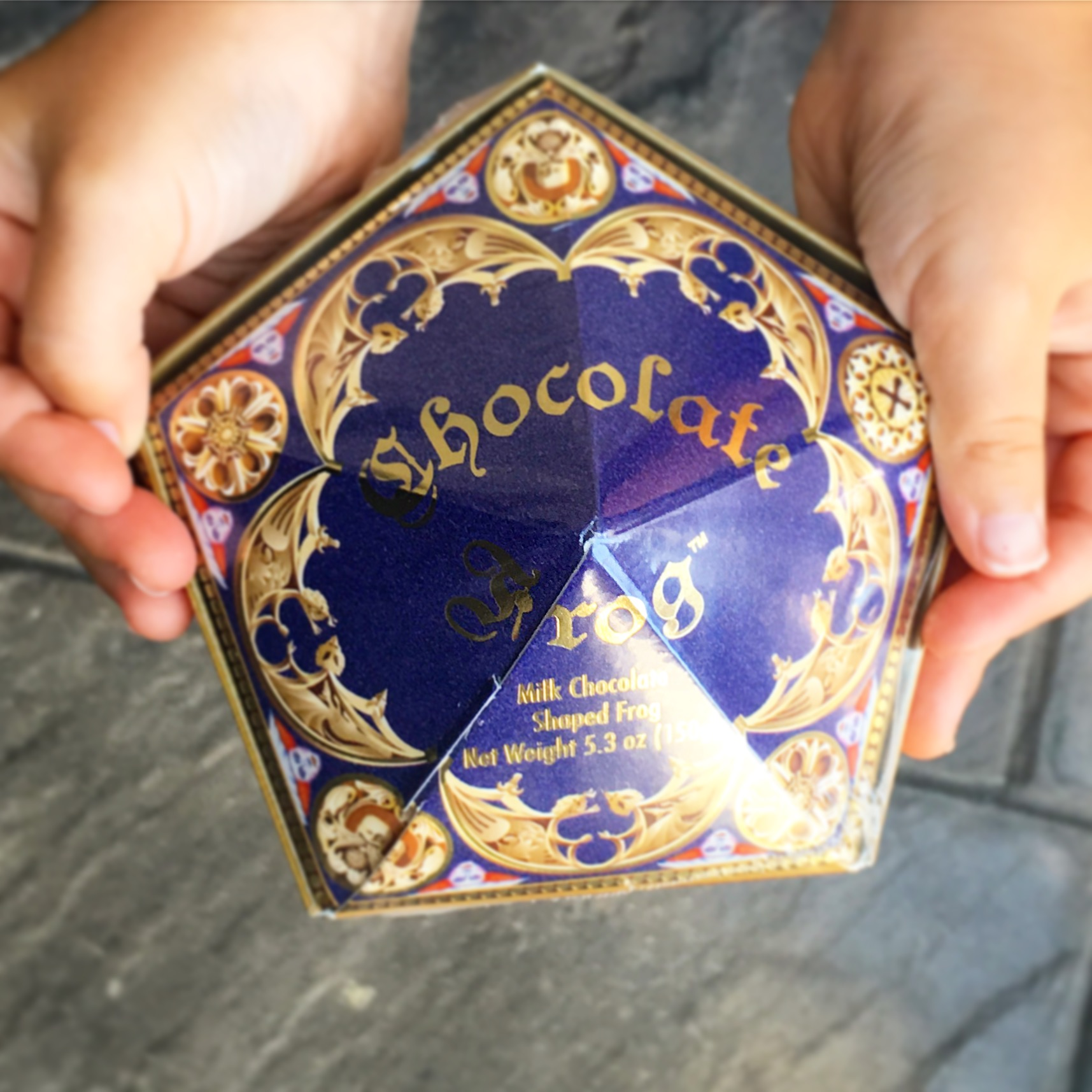 Chocolate Frogs from Universal Studios Harry Potter