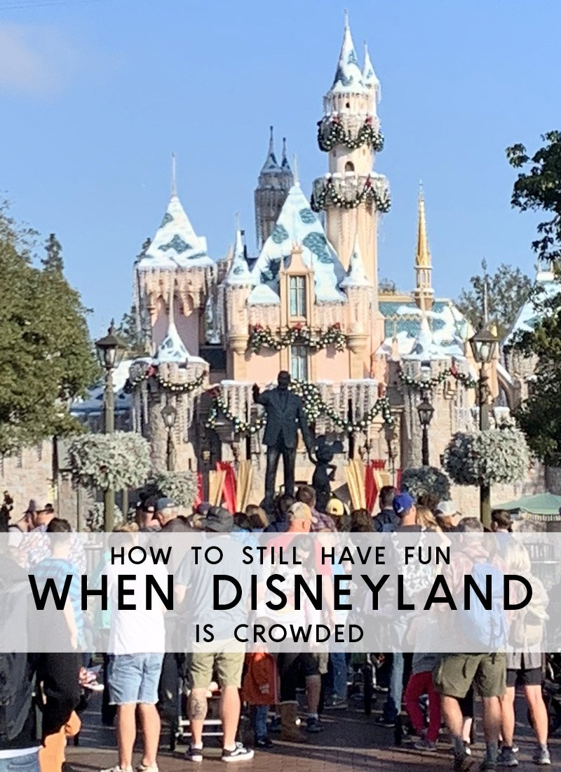 How to still have fun when disneyland is crowded.