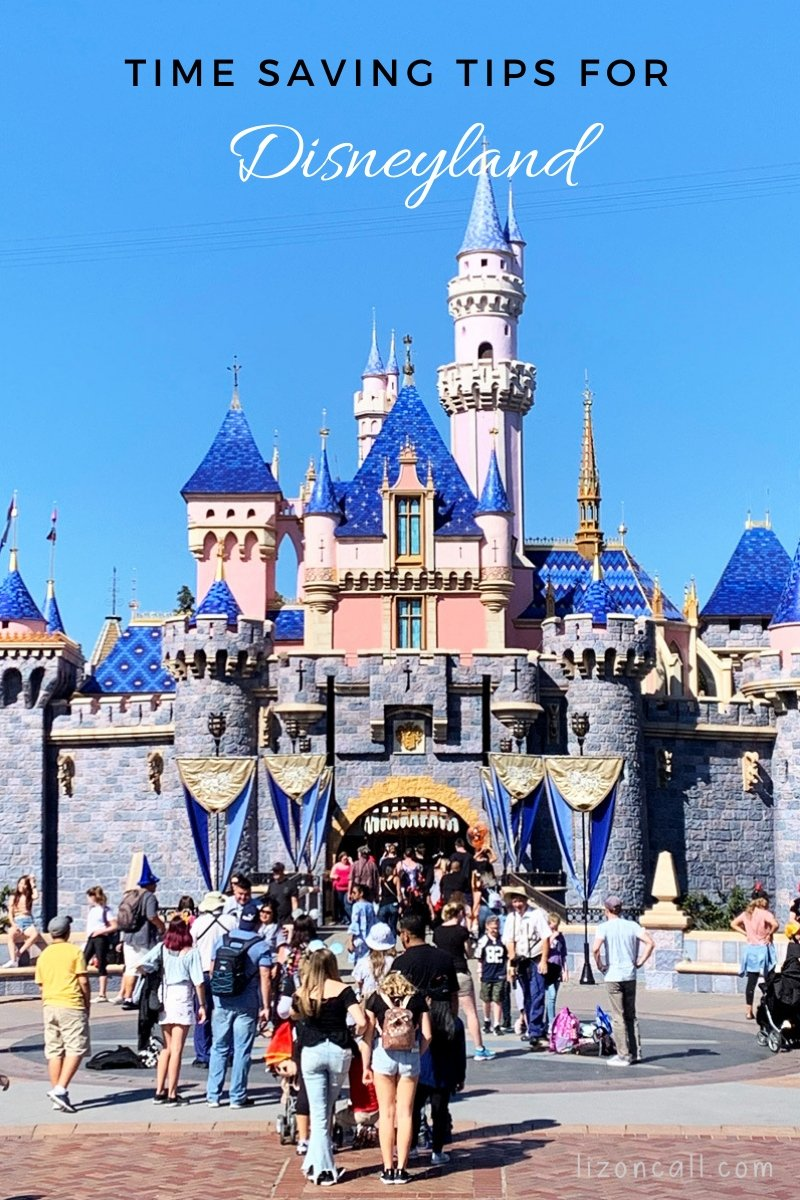 Titled Image of Disneyland Castle