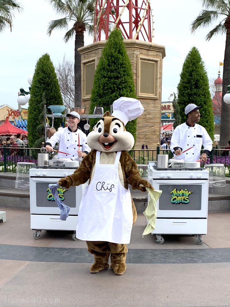1 half of Disney Duo Chip with the Jammin Chef's at California Adventure Food and Wine